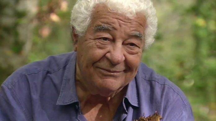 Antonio Carluccio's recipe for the perfect pizza